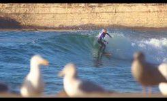 Surfingowy flow Zoltana Torkosa