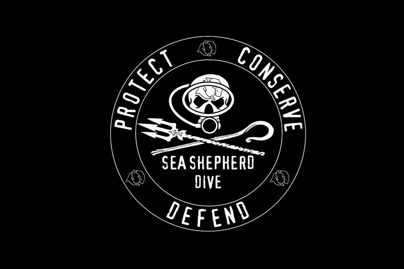 Sea Shepherd Dive – nowy pomysł na propagowanie ekologi