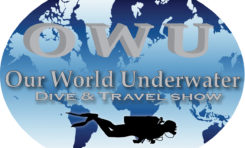 """""""Our World Underwater"""" ostatnie dni na zgłoszenie"""