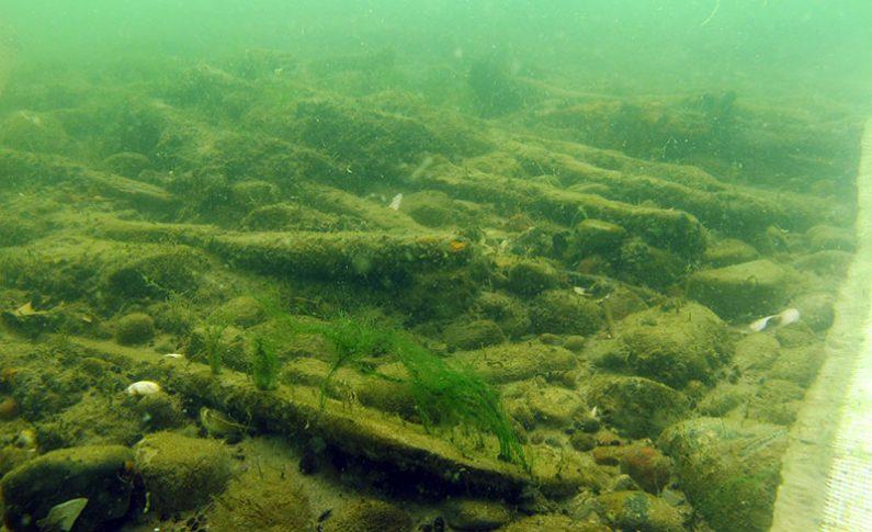 Broń z czasów napoleońskich została wydobyta z wody