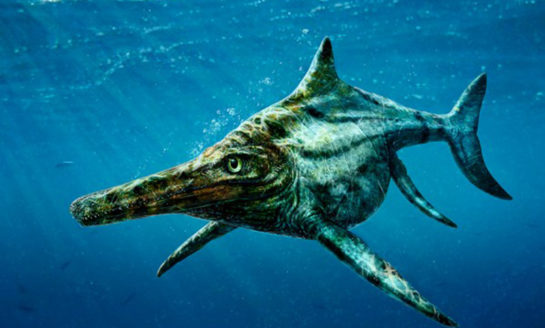 Skamieniałości morskich gadów ze Szkocji zidentyfikowane