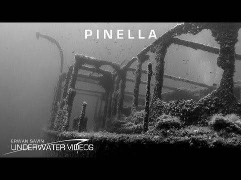 Malownicza Le Pinella