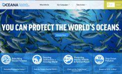 8 czerwca - Światowy Dzień Oceanów