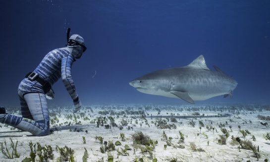Skafander do nurkowania o nietypowych właściwościach