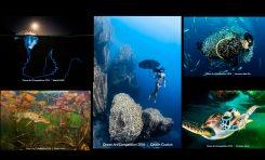 Ogłoszono wyniku międzynarodowego konkursu podwodnego Ocean Art