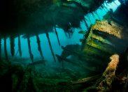 Scapa Flow. Eksplorować, by chronić.    Duch niemieckiej floty na łasce morza.