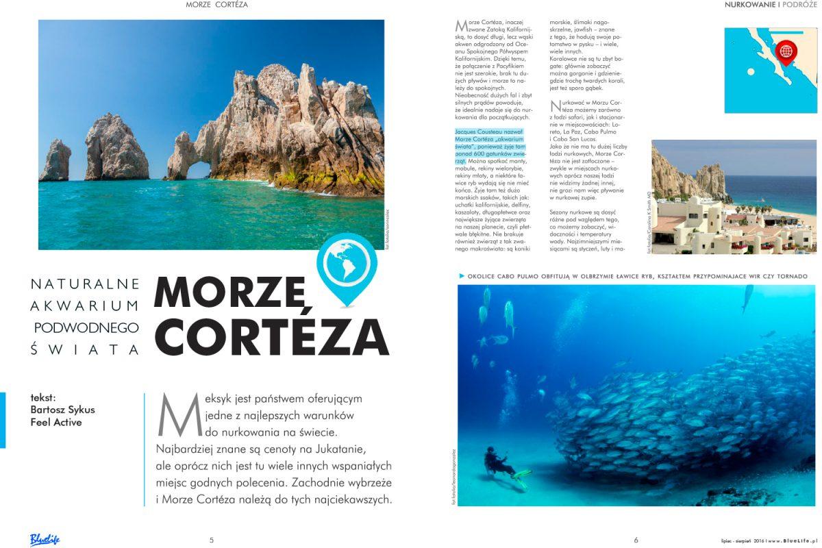 Naturalne akwarium podwodnego świata – Morze Cortéza
