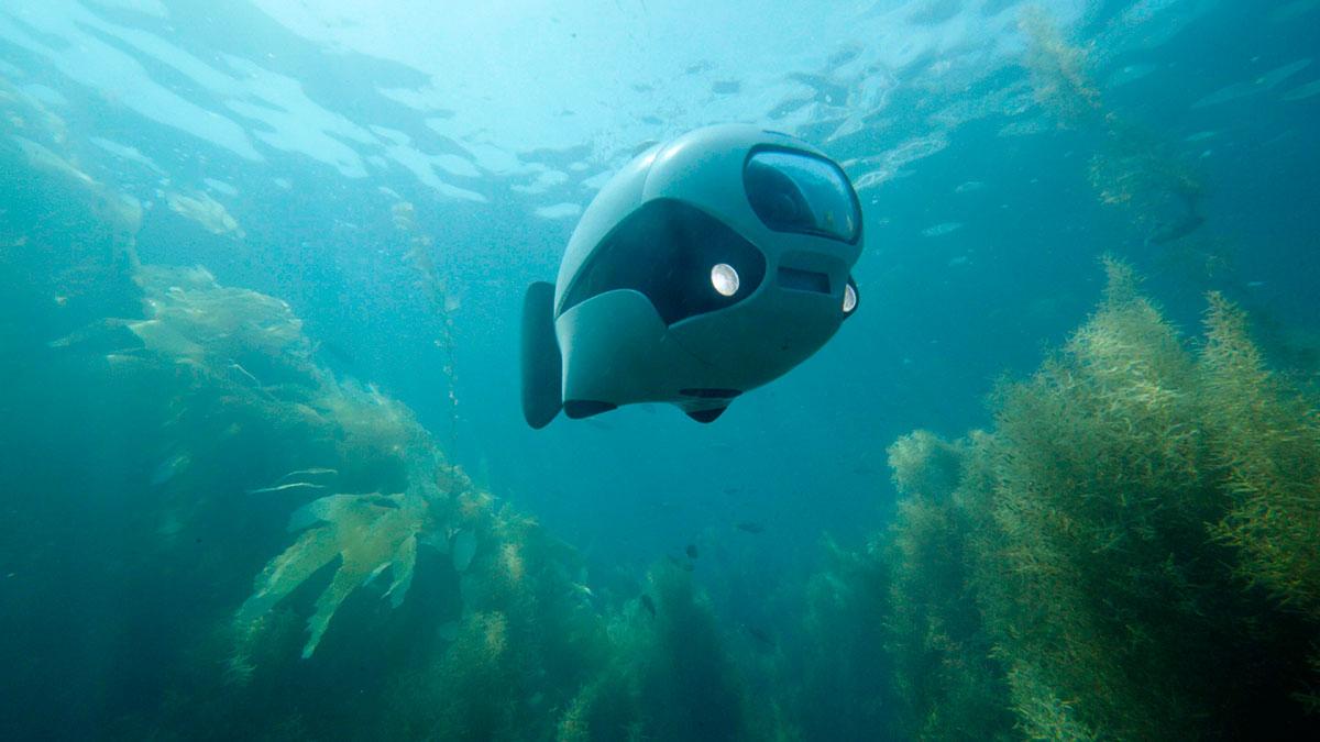Biki – podwodny dron zdalnie sterowany