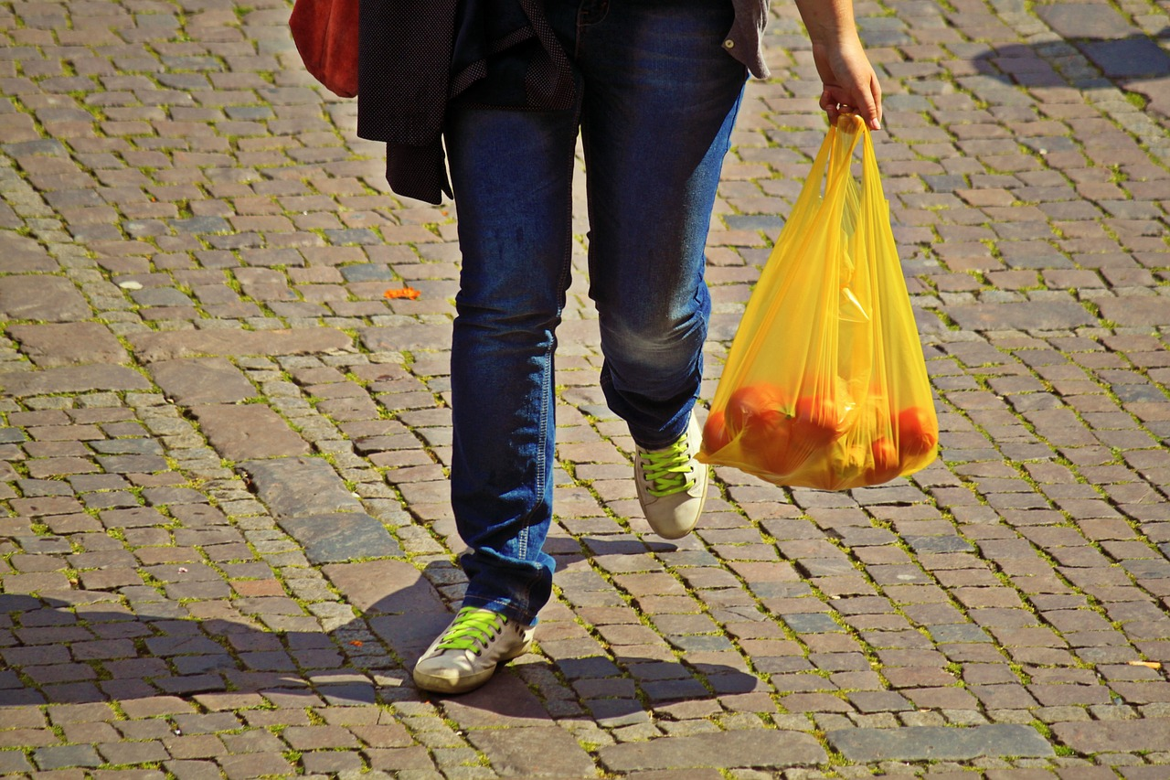 Rośnie liczba państw wprowadzająca ograniczenia w użytkowaniu plastikowych toreb