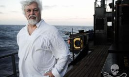 Kapitan Paul Watson z Sea Shepherd o dostępie do zasobów oceanów