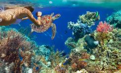 Seszele wyznaczają nowe morskie obszary chronione