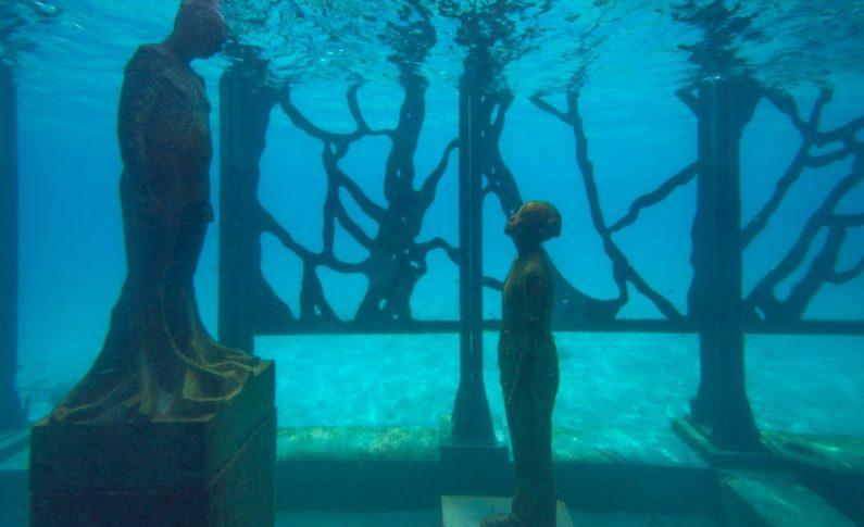 Coralarium Jasona de Cairesa Taylora, zniszczone!