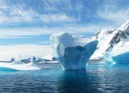 Greenpeace apeluje o stworzenie sanktuarium dla Oceanu Antarktycznego