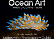 Ocean Art 2018 konkurs fotografii podwodnej