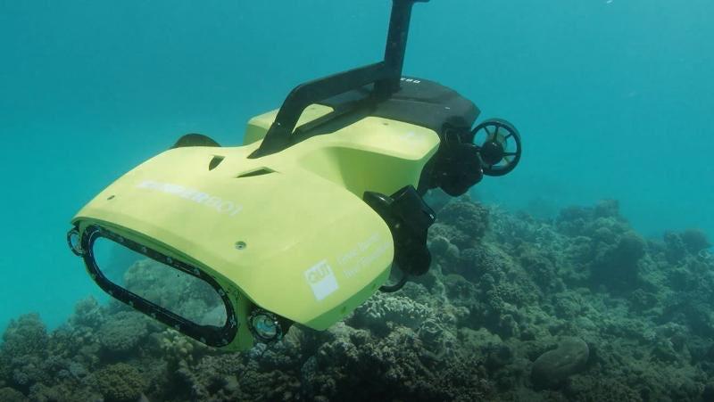 Adaptacja RangerBota na zdjęciu posłuży do dystrybucji larw koralowców wokół Wielkiej Rafy Koralowej