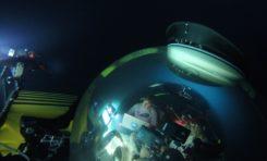 Robotyczny chwytak do badania najdelikatniejszych przedstawicieli życia morskiego