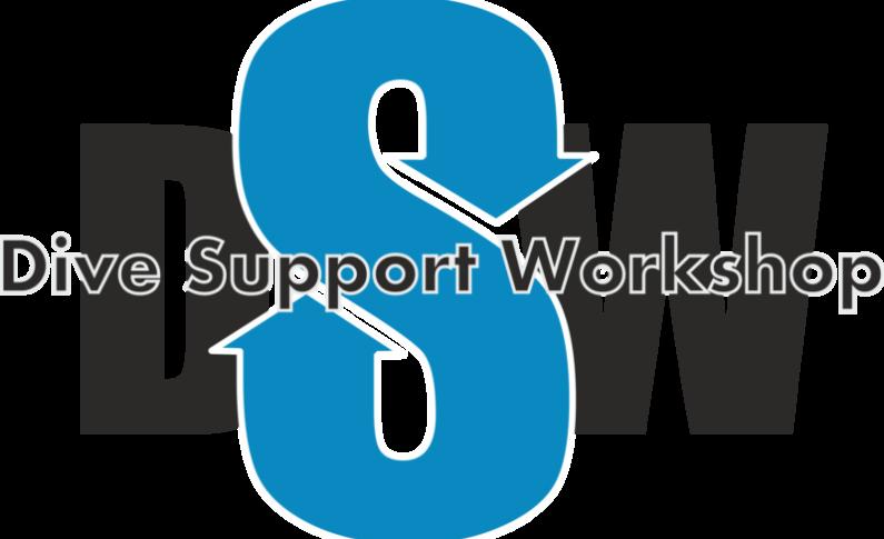 Nie tylko dla zawodowców - warsztaty DSW