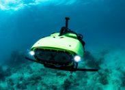Podwodny LarvalBot dostarcza pierwsze partie larw do ratowania rafy koralowej