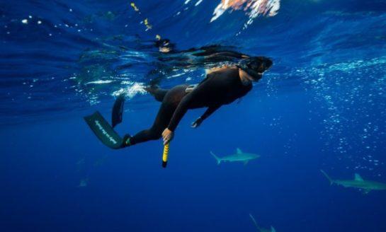ESpear pistolet do odstraszania rekinów