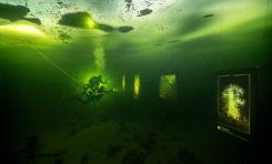 Wystawa fotografii podwodnej pod arktycznym lodem