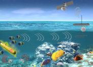 Badanie życia morskiego pod kątem wykrywania ruchu obiektów podwodnych