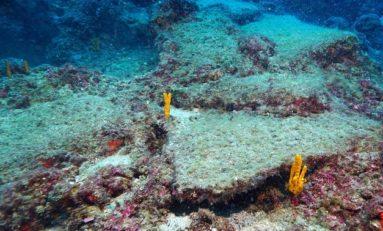 Statek handlowy sprzed 3600 lat odnaleziono u wybrzeży Antalyi w Turcji