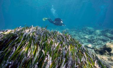 Potwierdzono odkrycie wraku niedaleko Akrotirii