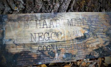 Nurkowie wydobyli z wraku 900 butelek rzadkiego francuskiego koniaku i likieru przeznaczonego dla Cara Mikołaja II