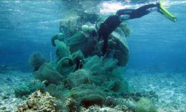 Plastisfera zagrożeniem nawet dla najmniejszych mieszkańców ekosystemów morskich