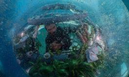 """Znamy zwycięzców konkursu fotograficznego """"Światowego Dnia Oceanów"""""""