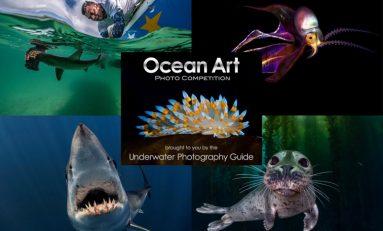 Ocean Art 2020 - trwa zgłaszanie prac do kolejnej edycji