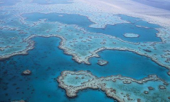 Po raz pierwszy udało się zmapować osady morskie pod względem różnorodności biologicznej