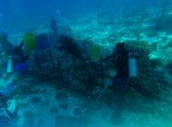 100-metrowy krzyż pod wodą dodatkową atrakcją turystyczną na Filipinach