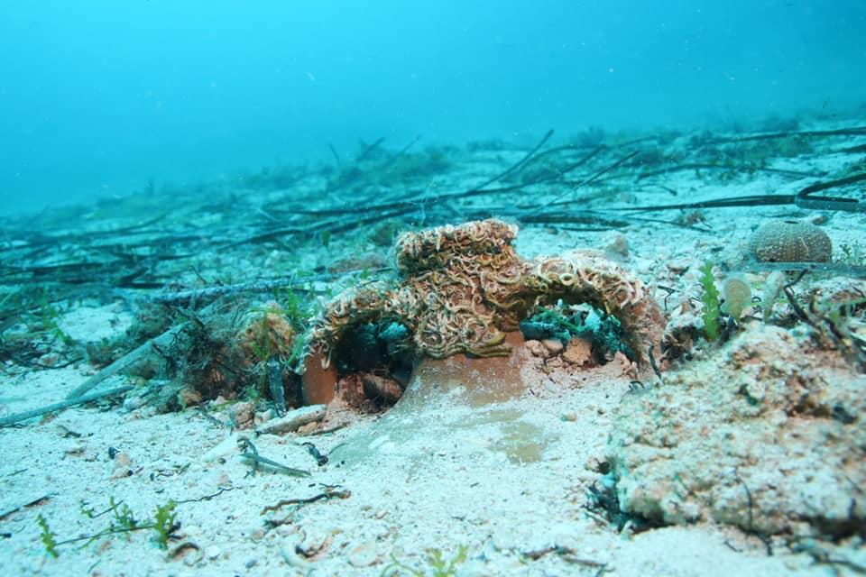 Nienaruszona antyczna ceramika w wodach Adriatyku