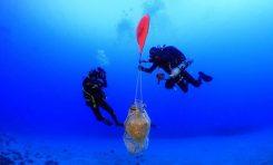 Nowo odkryte antyczne wraki w greckich wodach