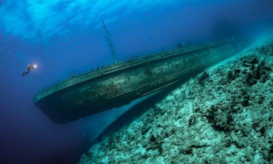 Epickie, ponadczasowe, oszałamiające i inspirujące - wybrano fotografie podwodne roku 2021