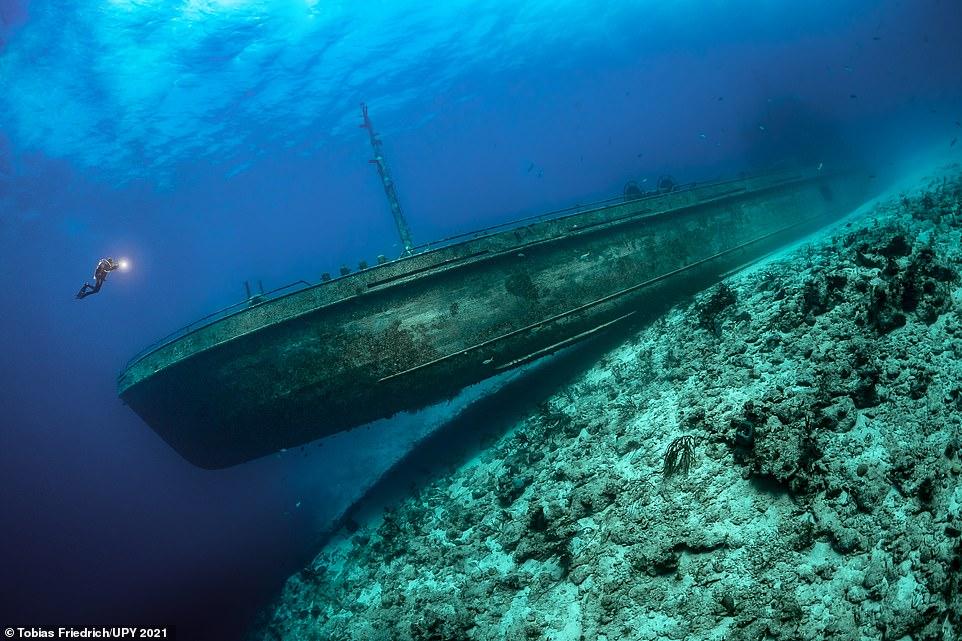 Epickie, ponadczasowe, oszałamiające i inspirujące – wybrano fotografie podwodne roku 2021