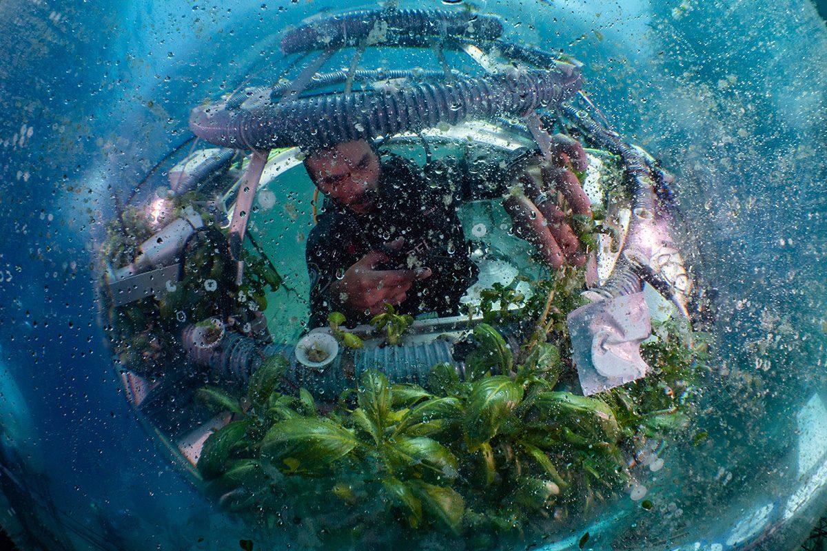 Trwają zgłoszenia do konkursu fotograficznego z okazji Światowego Dnia Oceanów