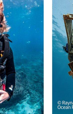 Seiko wspiera ochronę środowiska morskiego łącząc siły z PADI AWARE Foundation