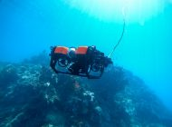 Zostań pilotem ROVa na Wielkiej Rafie Koralowej
